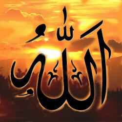 Salim Mansur sur la perversité du leadership musulman