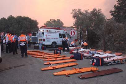 Incendie du Mont Carmel: Aidez Israël, toutes les informations pratiques pour vos dons