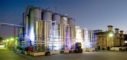 La révolution qui transforme l'industrie du vin israélienne