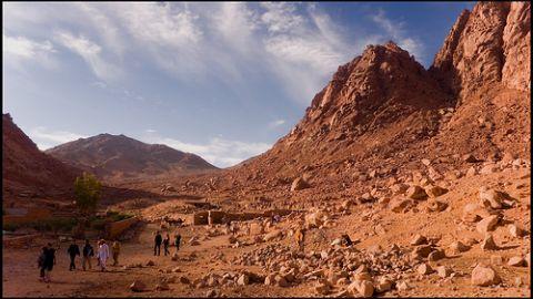 ÉGYPTE : Les africains qui cherchent asile en Israël sont réduits à l'esclavage dans le Sinaï