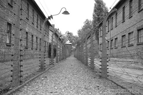 La Pologne refuse d'héberger Auschwitz