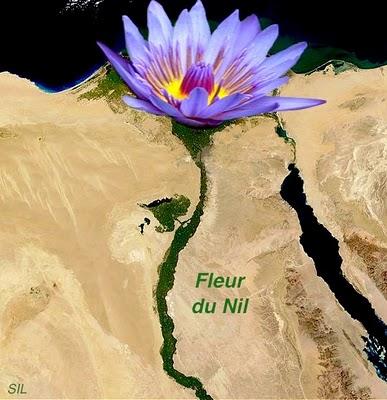 Le « printemps » ne sera-t-il qu'arabe ?