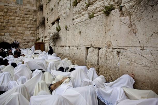 Dans le journal quotidien de l'Autorité palestinienne : « Juifs, Juifs ! Votre fête [Pâque] est la Fête des Singes »