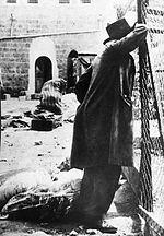 Israël célèbre la mémoire 133 juifs massacrés par les arabes à Hébron