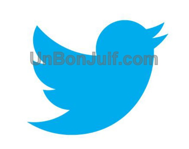 Affaire des hashtags antisémites : Twitter accepte de retirer les tweets antisémites