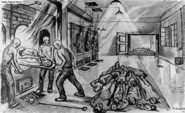 Gaia confond abattage rituel et déportation