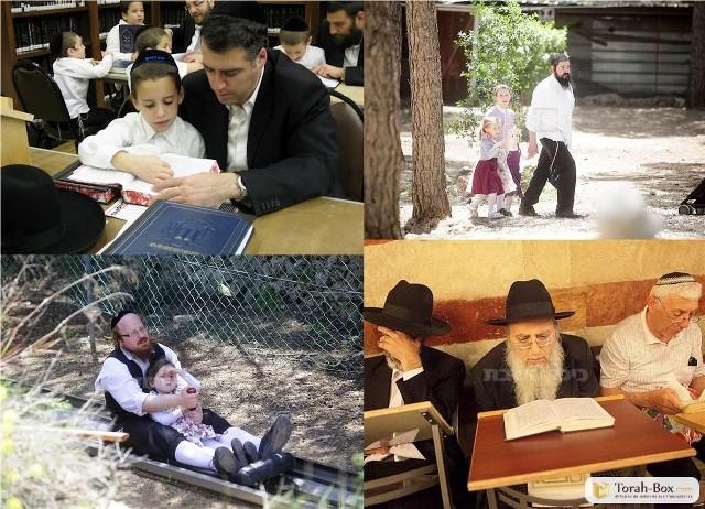La Différence entre la loi musulmane (la Chari'a) et la loi juive (la Halakha). Par Daniel Pipes