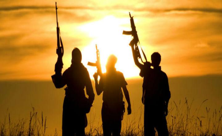 Djihadistes interpellés : l'avant-garde de la future armée intérieure ?