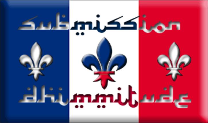 La France donnerait-elle des gages aux islamistes ?