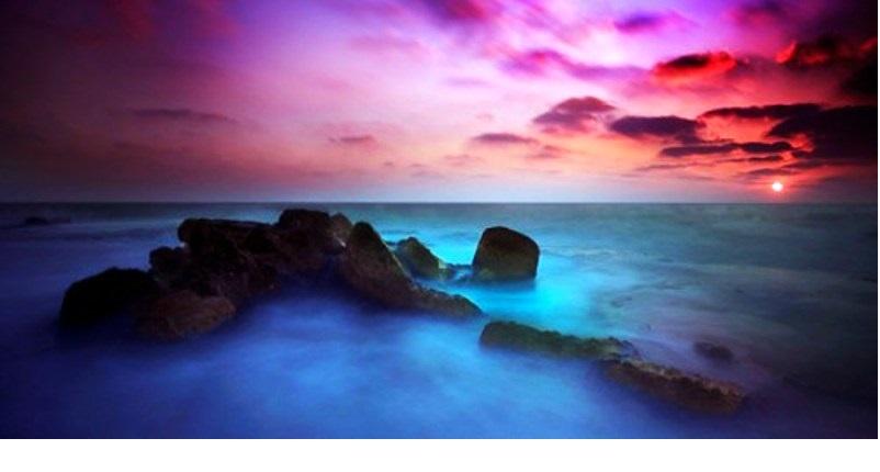 La Terre et la Mer.  Par Alexandre Goldfarb