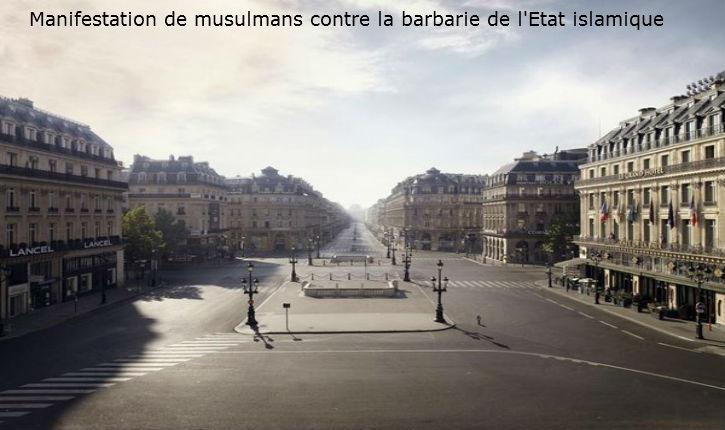 Le masque est définitivement tombé. Fiasco absolu de la manifestation des musulmans contre le meurtre d'Hervé Gourdel et la barbarie de l'Etat islamique (photos)