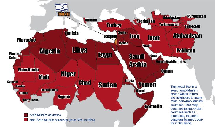 Ces goys qui défendent Israël : conflit israélo-arabe, la terre contre la paix ?