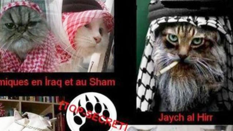 Films, Internet, jeux vidéo : les nouvelles armes de recrutement du djihad