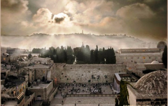 La Destruction de l'Histoire. Par Eli E. HERTZ
