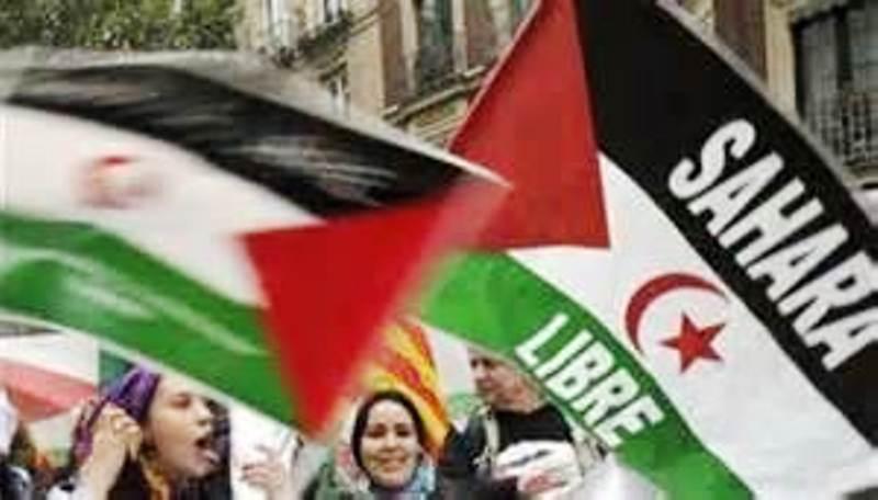 Gazaouis contre Sahraouis : fais ce que je dis, pas ce que je fais