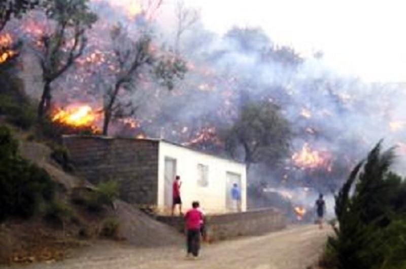 L'armée intervient pour lutter contre les incendies en Kabylie