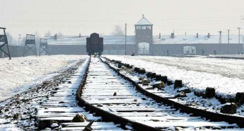 Que nous apprend Auschwitz?  Par Nadia Lamm