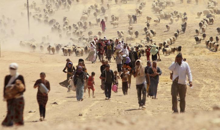 Yezidis exil irak genocide