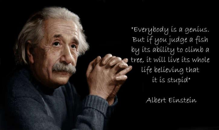 Essay On Einstein