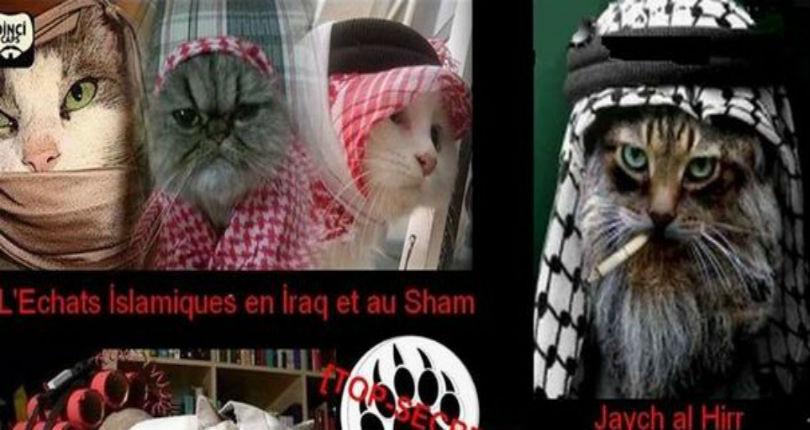 Les pièges de la propagande sucrée des djihadistes: derrière la barbarie la propagande «soft»