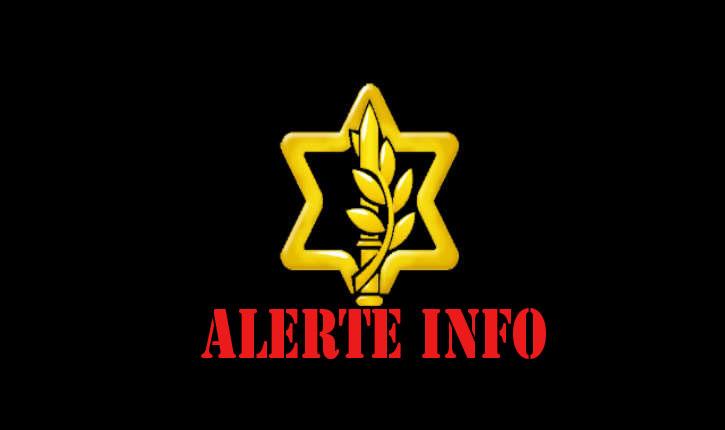 Tsahal: Un soldat a été poignardé lors d'une tentative d'infiltration en Israël
