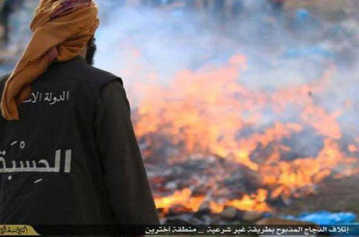 L'Etat islamique diffuse des photos de milliers de poulets incendiés pour affamer la population