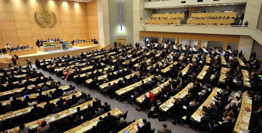 Absurde résolution de l'OMS : Qui est condamné pour «avoir violé les droits à la santé des Syriens» ? Le régime syrien et ses 220 000 morts ? Israël bien sûr !