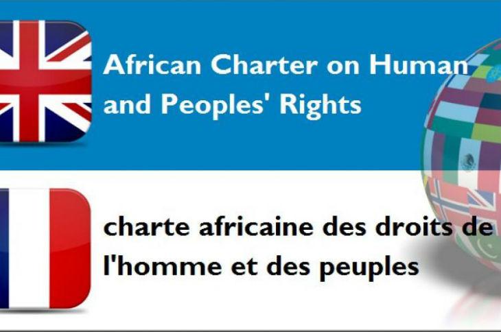 Antisémitisme: La Charte Africaine des Droits de l'Homme et des Peuples, signée par 52 pays, «s'engage à éliminer le sionisme»