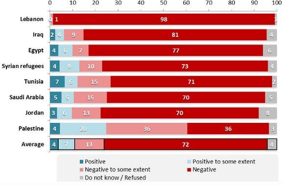 24% d'entre eux ont une opinion positive ou assez positive des islamistes de Daesh et 36% disent en avoir une opinion assez négative. Seuls 36% ont une opinion clairement négative de Daesh.