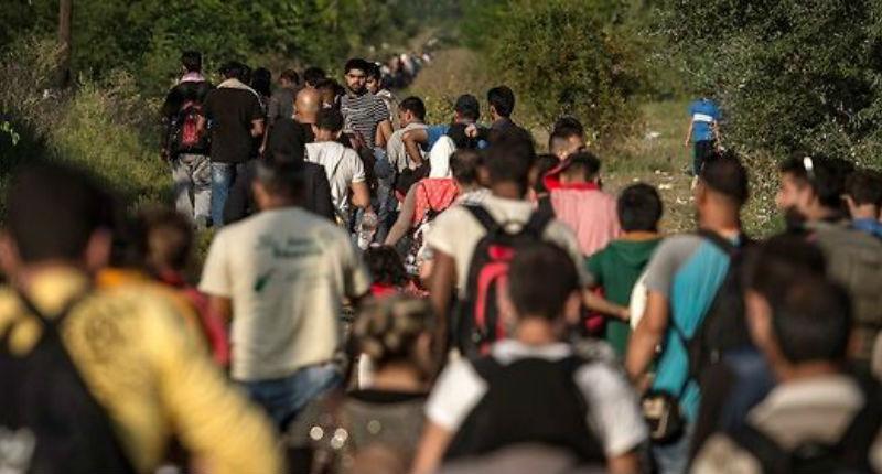 Hongrie : Le mur anti-migrants est terminé. Les clandestins continuent d'arriver massivement