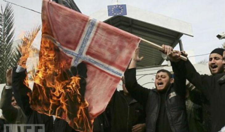 """Norvège : Cambriolages violents. La Police d'Oslo """"Nous avons perdu la ville"""""""