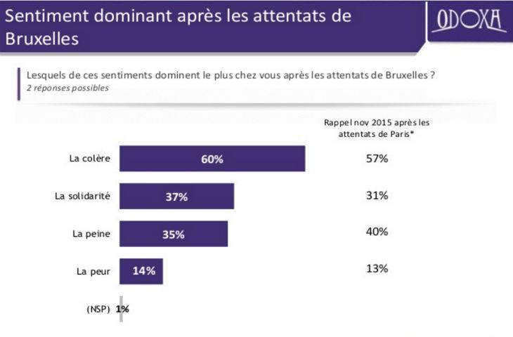 Sondage, attentats : 71% des Français estiment que la France est en guerre. Plus de 60 % en colère après les attentats de Bruxelles