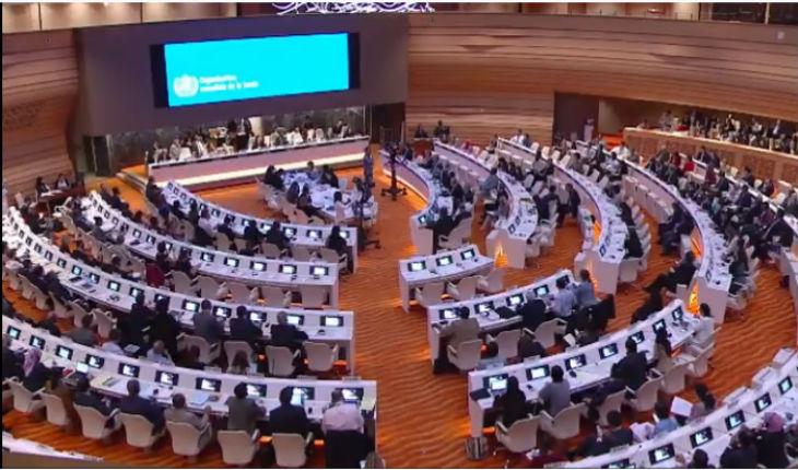 Nouveau scandale à l'ONU: Le Royaume-Uni, la France, l'Allemagne ont voté une résolution indiquant que seul Israël contrevenait aux droits de la santé dans le monde