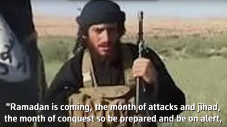 Syrie : Al-Adnani, numéro deux de l'Etat islamique et organisateur des attentats de Paris, tué à Alep
