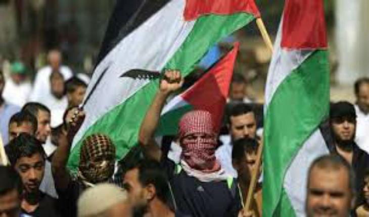 L'arabe n'est pas pro palestinien, il est anti-juif. Une chronique de Nouhad Fathi