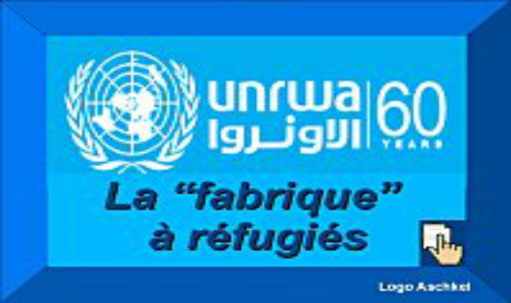 Crise : L'Agence de l'ONU pro-Hamas pour les réfugiés Palestiniens (UNWRA) sera bientôt en faillite