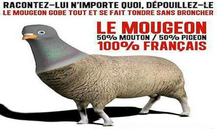 Une France majoritairement à droite qui réélit la gauche ? C'est possible !