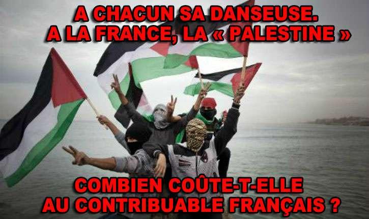 [Vidéo] France : Des réserves parlementaires financent des associations qui soutiennent le terrorisme palestinien