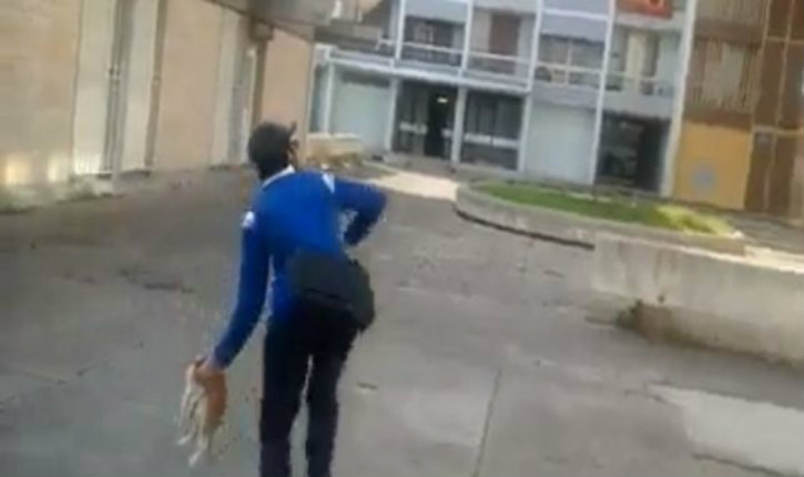 Maltraitance animale : Des chatons torturés par des « jeunes » dans la ZUP du Plessis (photos)