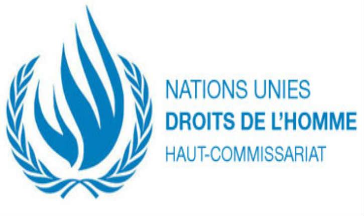 Le haut commissaire des Nations Unies aux droits de l'homme serait-il à la solde de BDS ?