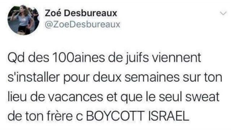 Pétition pour la condamnation de Zoé Desbureaux pour antisémitisme