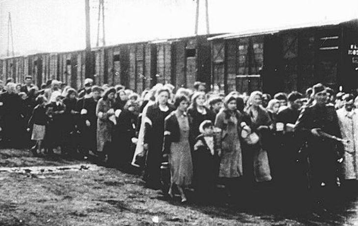 Histoire : Les exemptions n'ont pas sauvé les Juifs hollandais
