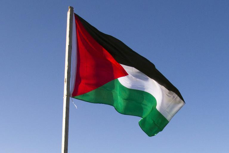 «La solution au conflit israélo-palestinien serait que les Juifs israéliens partent pour les Etats-Unis, un autre régime infernal «, selon une politique suèdoise pro-palestinienne