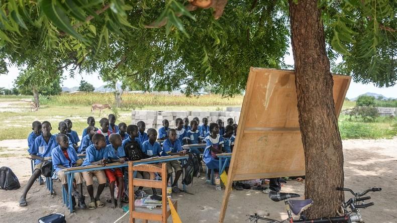 Zoophilie, pédophilie : un manuel scolaire «suspect» fait polémique au Cameroun