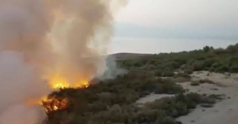 Un Palestinien reconnaît avoir mis le feu dans une réserve naturelle près de la mer Morte (Vidéo)