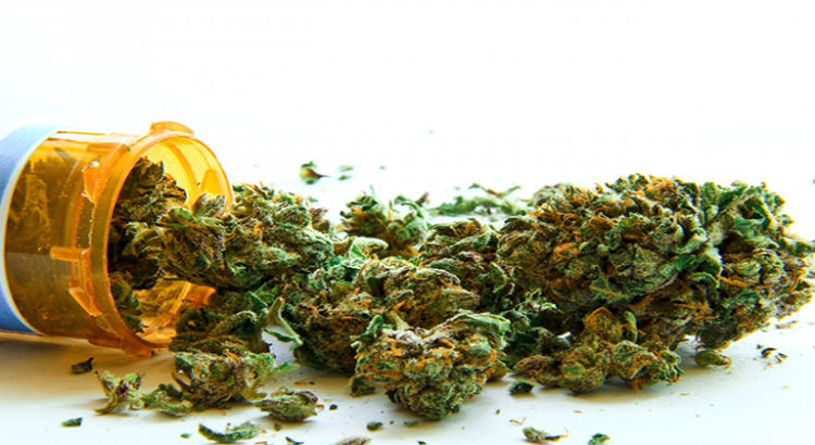 Le cannabis médical, un nouveau marché pour Israël