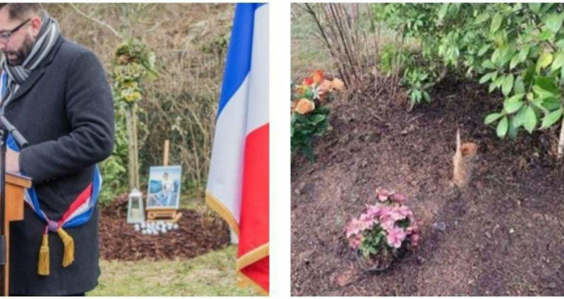 A trois jours de l'anniversaire de sa mort, les arbres plantés en la mémoire d'Ilan Halimi ont été sciés et saccagés