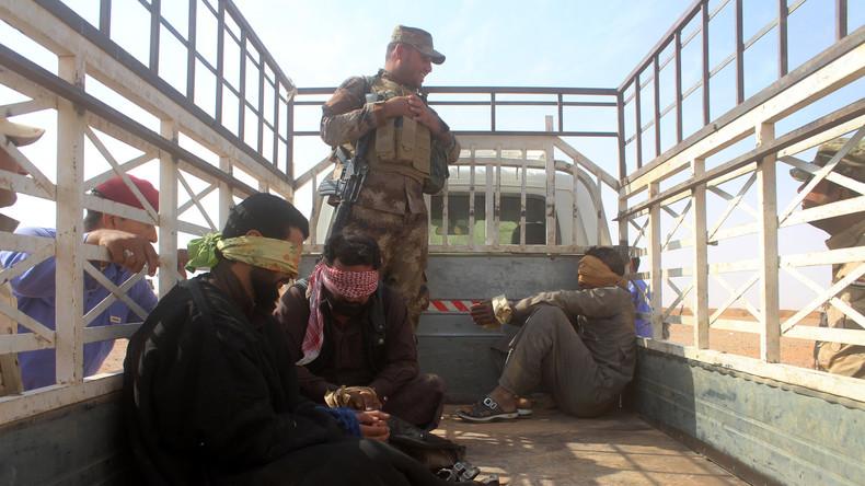 Sébastien Chenu, RN : « Pas de pitié pour les condamner à mort ? J'en ai rien à foutre des djihadistes condamnés à mort en Irak ! » (Vidéo)