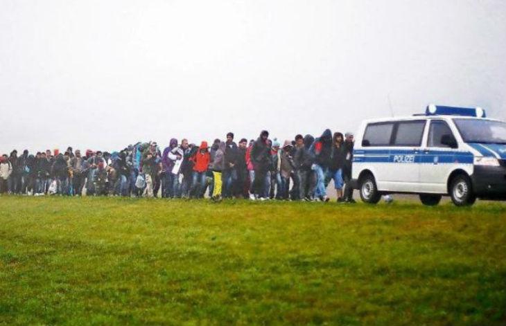 Allemagne : depuis 2014, au moins 5.000 criminels de guerre seraient arrivés comme migrants