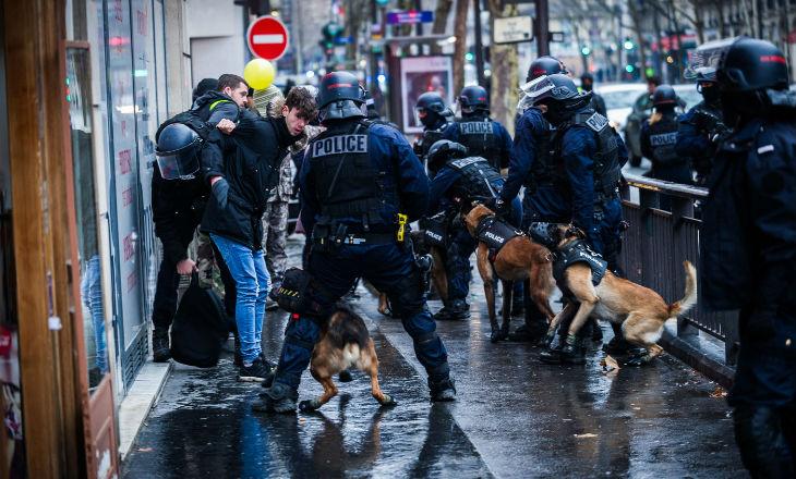 Le préfet de Paris aurait demandé de démuseler les chiens d'attaque pour l'acte 24 des Gilets jaunes